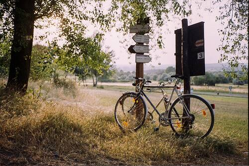Bicycle rests against two signs with directions at the edge of the trees - Holiday apartment Hunsrück